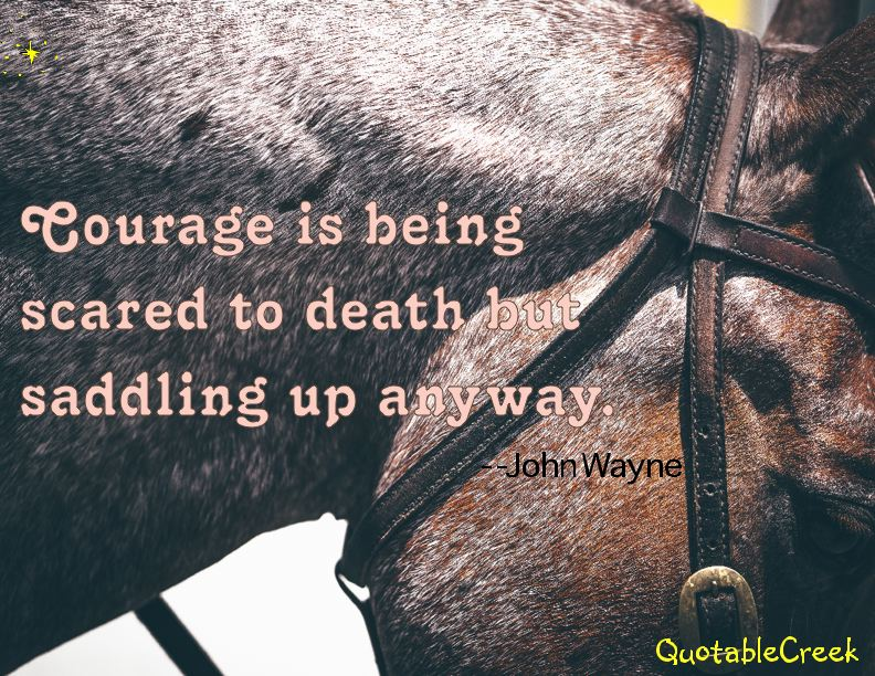 couragesaddle