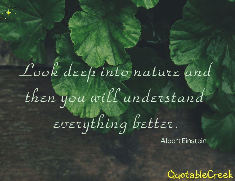 deepnature