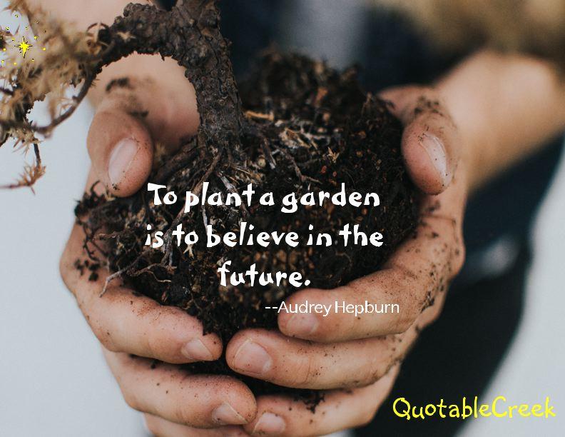 futuregarden