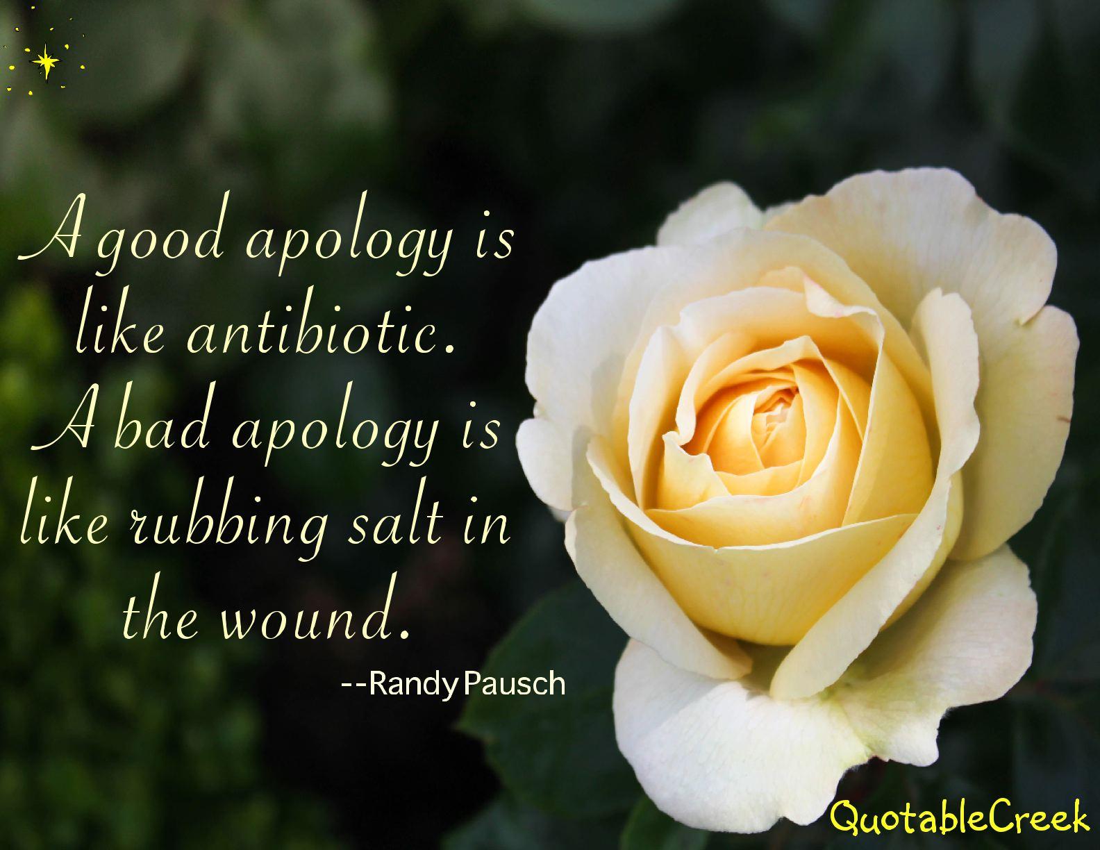 goodapology