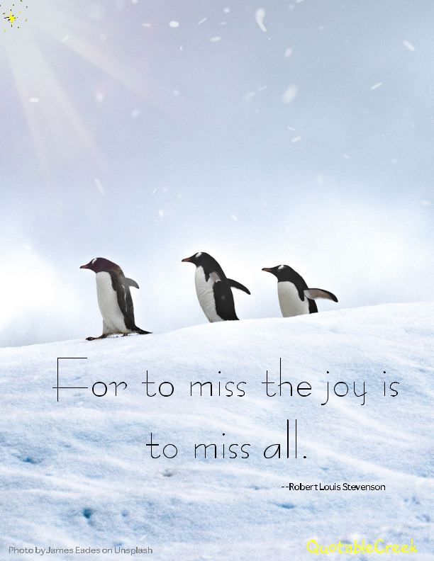 penguinjoy